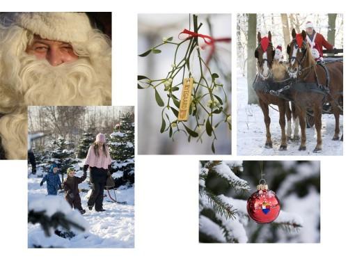 Julekort med Ryegaard-motiver