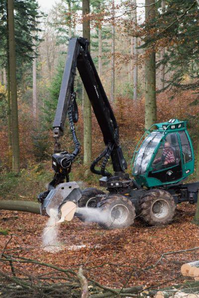 Skovbrug---10