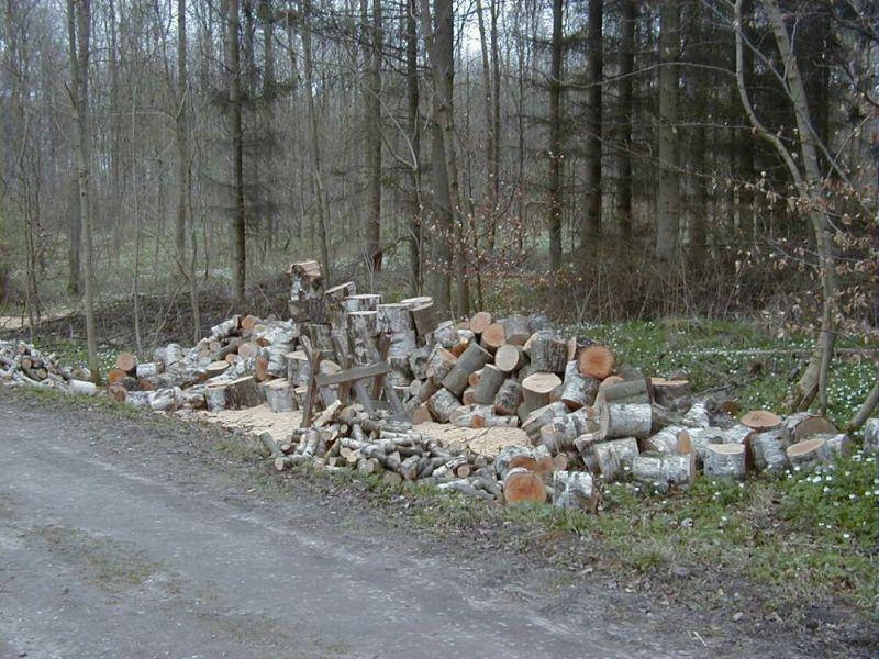 Skovbrug---2