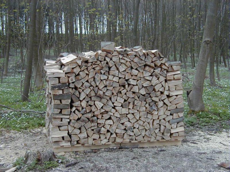Skovbrug---3
