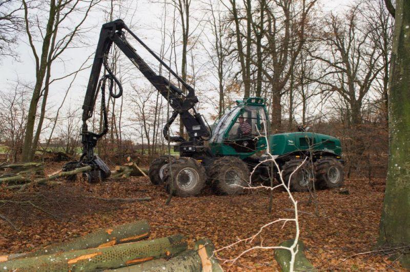 Skovbrug---9