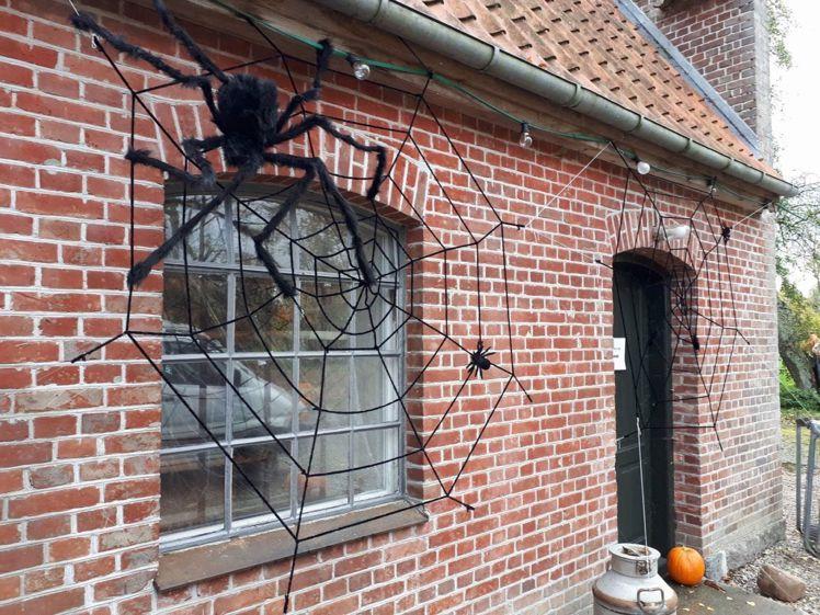 Halloween19---11
